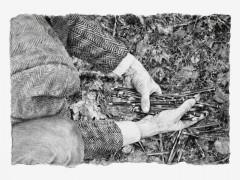 Philip Loersch – Waldstifte 3, 2012